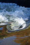 Свирли воды Стоковая Фотография RF