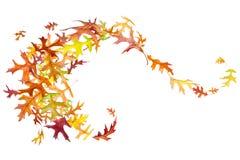 Свирль листьев осени Стоковое Изображение