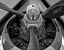 Свистя корсар смерти/F4U стоковые изображения