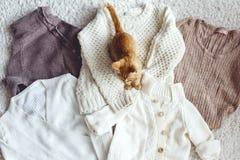 свитеры Стоковое Изображение RF