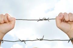 свобода Стоковое Изображение