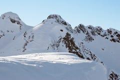 свободная лыжа Стоковые Фотографии RF