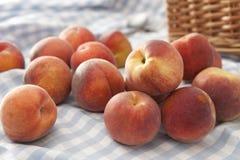 свободные персики Стоковое фото RF