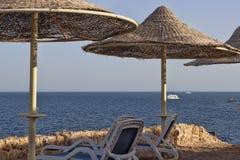 Свободные sunbeds и зонтики на пляже Стоковая Фотография