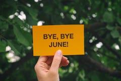 Свободный от игры день, свободный от игры день июнь! стоковые фотографии rf