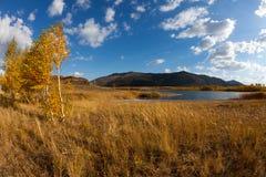 Свободный полет озера соли Стоковое фото RF