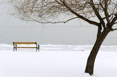 Свободный полет озера Balaton в времени зимы Стоковые Фотографии RF