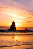 свободный полет Орегон view3 пляжа Стоковая Фотография RF