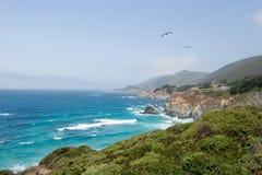 свободный полет california Стоковая Фотография RF