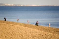 свободный полет dorset Англия chesil пляжа стоковые изображения