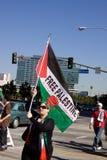 свободный протест Палестины Стоковое Изображение
