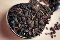 Свободный чай в ложке металла на деревянной поверхности Стоковое Изображение