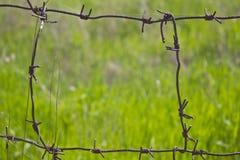 Свобода наряду Стоковая Фотография