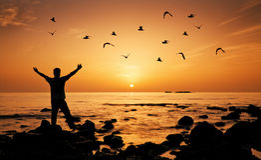 Свобода чувства человека на пляже во время восхода солнца Стоковое фото RF