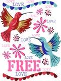 Свободные колибри с красивыми цветками и свободная влюбленность Стоковые Изображения