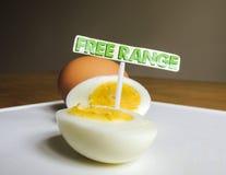 Свободный ряд, органические, трудные вареные яйца Стоковое Изображение