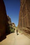 своды hiking национальный парк Стоковое Изображение RF