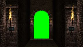 Свод с зеленым экраном видеоматериал