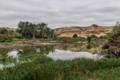 Свод Namibe оазис в пустыне которая обычно заполняет каждые 6 лет в зависимости от дождя anisette вышесказанного Namibe стоковые фотографии rf