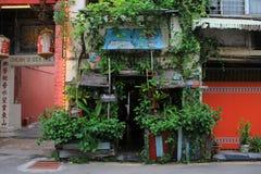 Своеобразное кафе растительности в городе стоковая фотография rf