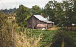 Свойство фермы в сельском Тихом океан северо-западном городке стоковое фото rf