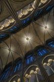 Сводчатые потолки собора стоковые фото