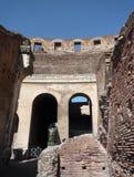 Своды Colosseum, Рима стоковые фотографии rf