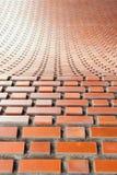 Свод masonry кирпичной кладки в flemish скрепляет с малой глубиной foc Стоковое Фото