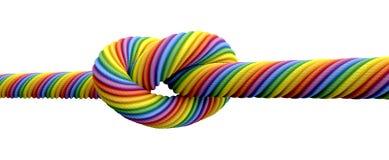 Свяжите брак гомосексуалистов узла иллюстрация штока