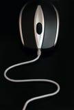 связанная проволокой мышь Стоковое Фото
