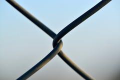 связанная проволокой загородка Стоковые Фото