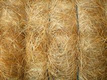 связанное сено bale Стоковые Изображения RF