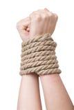 Связанные руки, изолированная белизна Стоковое фото RF