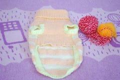 Связанный свитер для маленькой собаки с 2 шариками пряжи шерстей стоковое фото