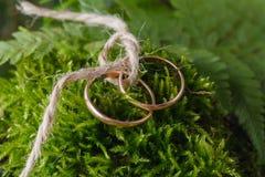 2 связанных золотых обручального кольца на мхе Стоковые Фотографии RF
