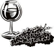 Связка винограда свеже выбранное зрелое бесплатная иллюстрация