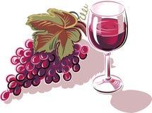 Связка винограда свеже выбранное зрелое иллюстрация вектора