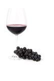 Связка винограда и стекло красного вина Стоковая Фотография RF