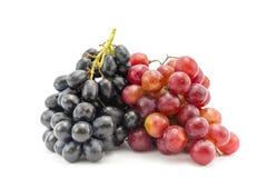 Связка винограда Стоковые Изображения RF