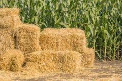 Связка квадрата соломы против зеленого поля мозоли, связок сена на проселочной дороге Стоковые Фото