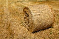 Связка крена соломы Стоковая Фотография RF