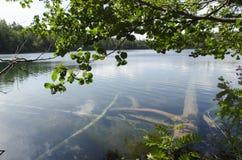 Связка озера Стоковое Изображение RF