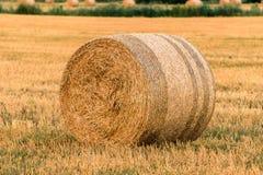 Связка сена на поле в конце лета Стоковая Фотография