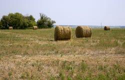 Связка сена на поле Стоковое фото RF