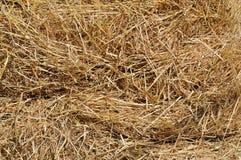 Связка сена стоковая фотография