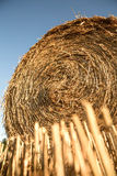 Связка сена Стоковые Фото