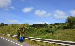 Связка травы сена, остров Сантьяго, Кабо-Верде - африканский ландшафт Стоковые Изображения