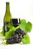 Связки винограда стоковое изображение