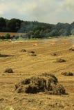 Связки сена Англия Стоковые Изображения RF