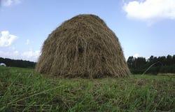 Связки сена в поле на стоковая фотография rf